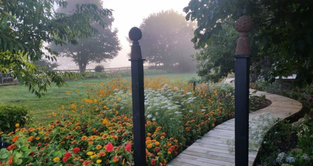 The boardwalk along our lawn meanders off into the mist.