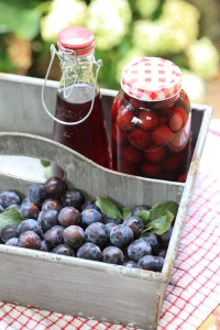 Make your own Damson gin.
